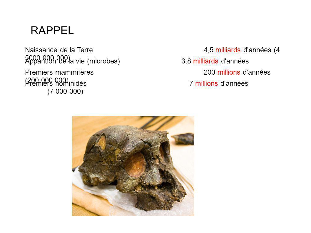 RAPPEL Naissance de la Terre4,5 milliards d années (4 5000 000 000) Apparition de la vie (microbes)3,8 milliards d années Premiers mammifères200 millions d années (200 000 000) Premiers hominidés 7 millions d années (7 000 000)