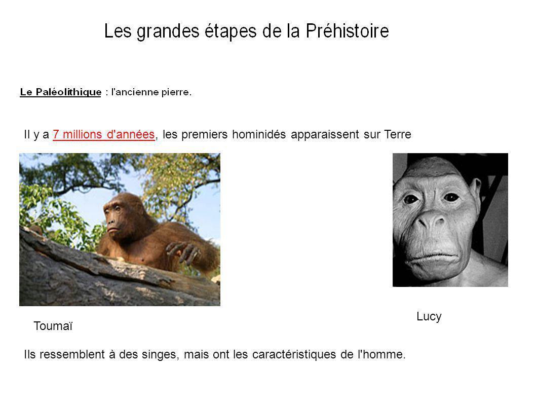 Il y a 7 millions d années, les premiers hominidés apparaissent sur Terre Toumaï Lucy Ils ressemblent à des singes, mais ont les caractéristiques de l homme.