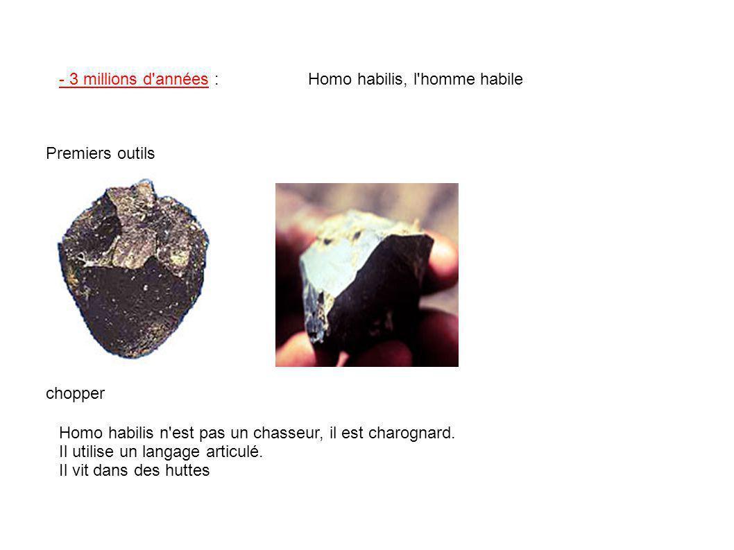 - 3 millions d'années :Homo habilis, l'homme habile Premiers outils chopper Homo habilis n'est pas un chasseur, il est charognard. Il utilise un langa