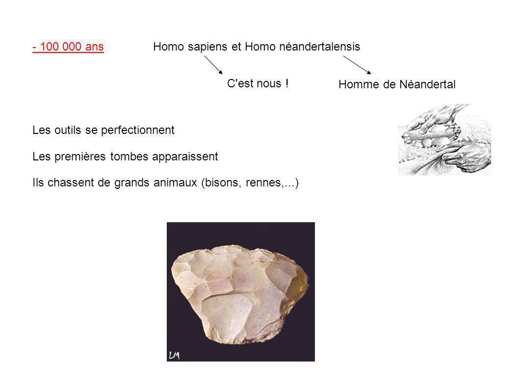 - 100 000 ansHomo sapiens et Homo néandertalensis C'est nous ! Homme de Néandertal Les outils se perfectionnent Les premières tombes apparaissent Ils