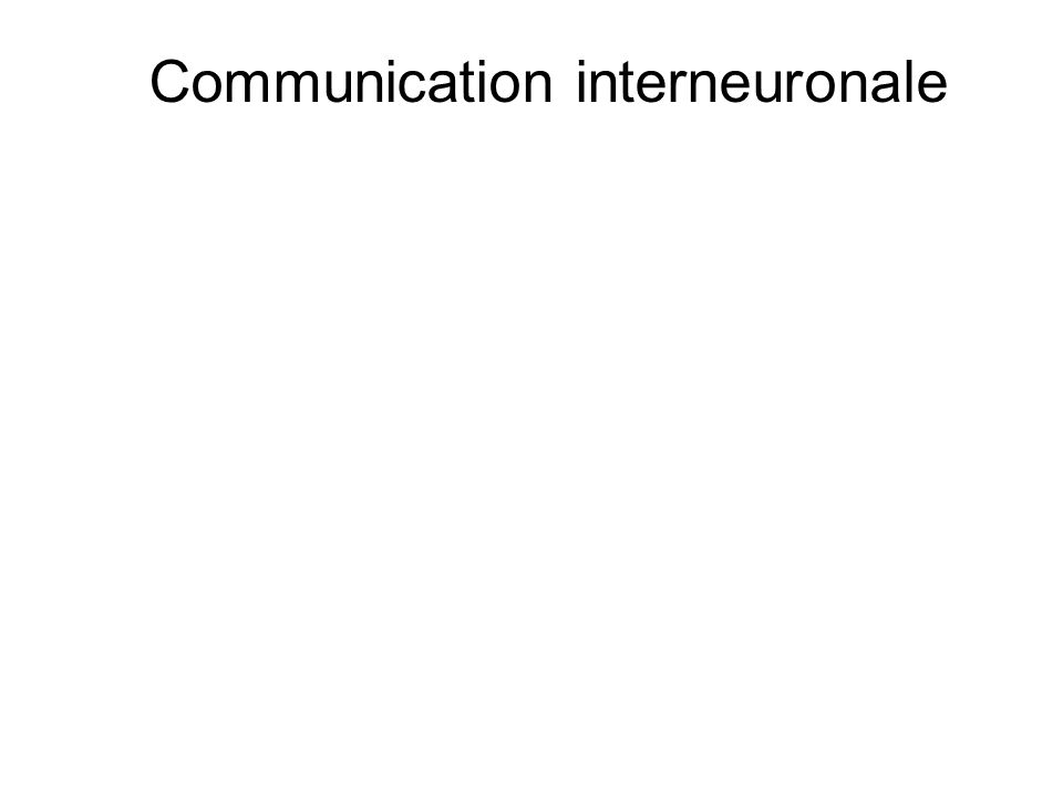 Communication interneuronale