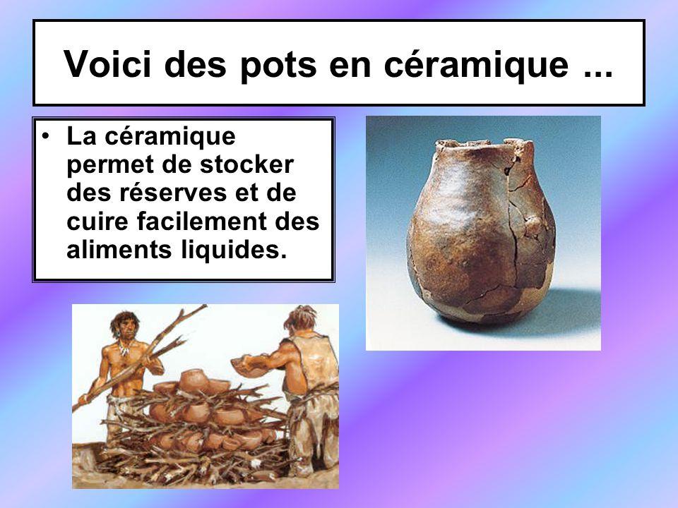 Voici des pots en céramique... La céramique permet de stocker des réserves et de cuire facilement des aliments liquides.