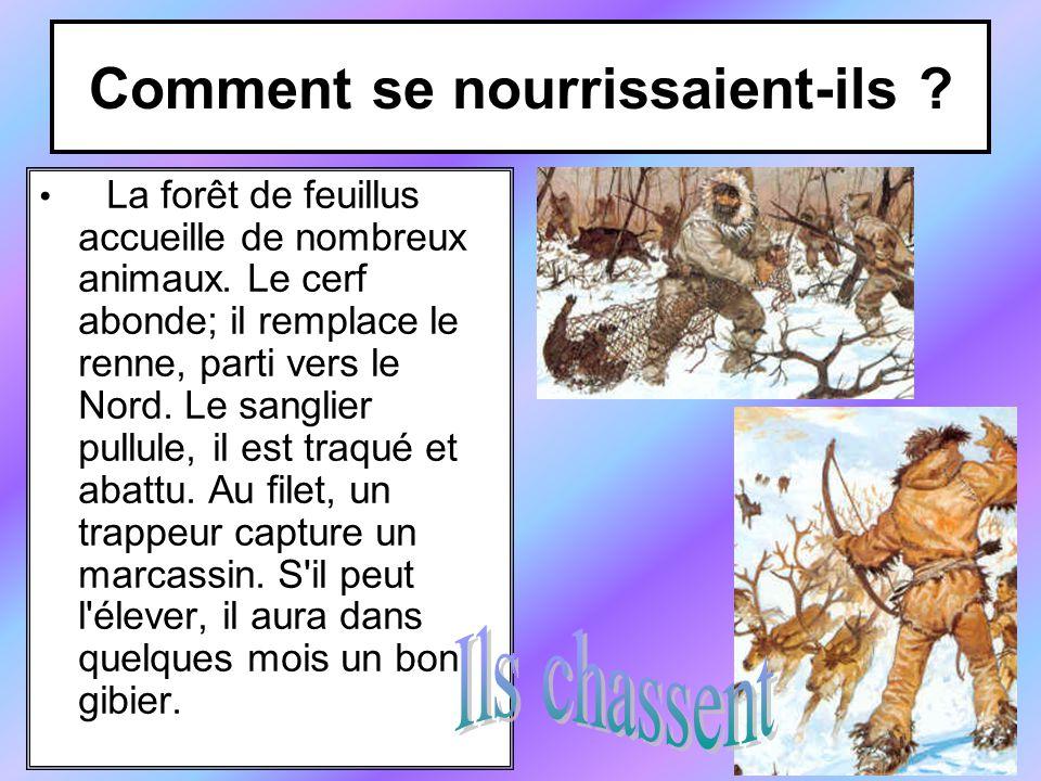 Comment se nourrissaient-ils ? La forêt de feuillus accueille de nombreux animaux. Le cerf abonde; il remplace le renne, parti vers le Nord. Le sangli