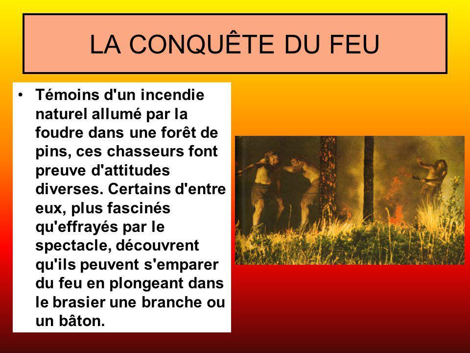 LA CONQUÊTE DU FEU Témoins d'un incendie naturel allumé par la foudre dans une forêt de pins, ces chasseurs font preuve d'attitudes diverses. Certains