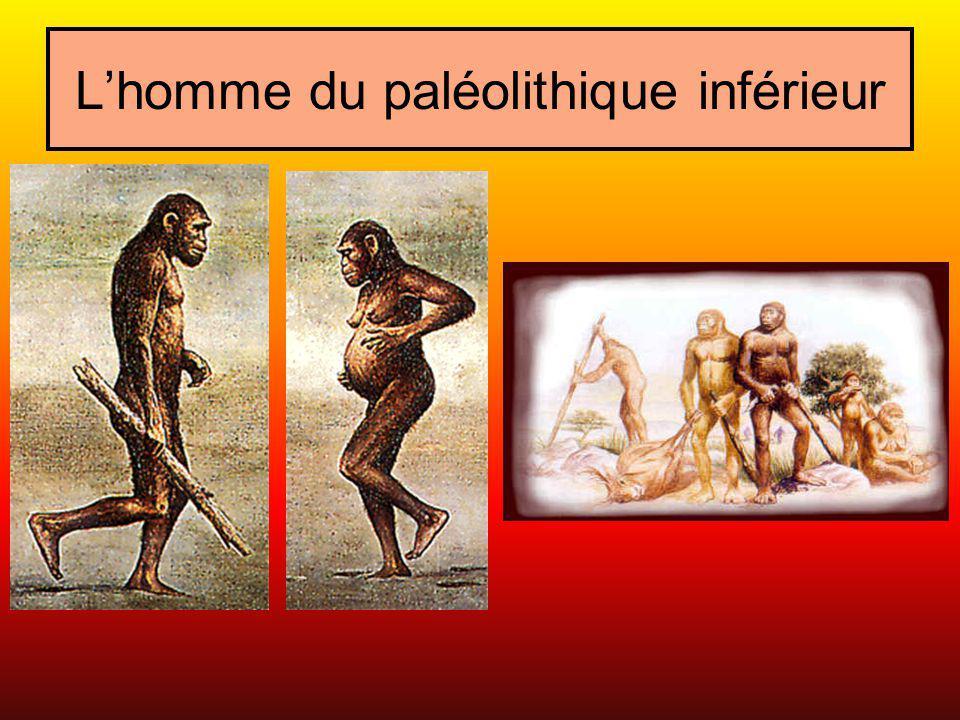 Lhomme du paléolithique inférieur Ils chassaient mais, néanmoins, ils utilisaient des outils rudimentaires qui pouvaient leur servir pour la chasse et pour dépecer le gibier.