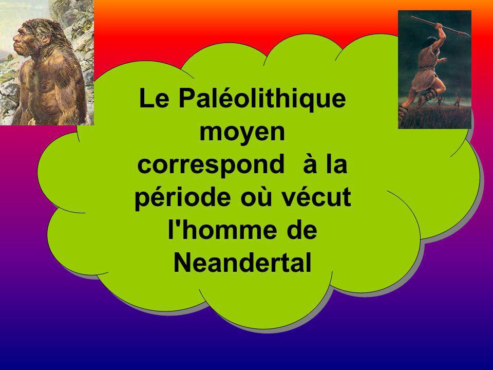 Le Paléolithique moyen correspond à la période où vécut l'homme de Neandertal Le Paléolithique moyen correspond à la période où vécut l'homme de Neand