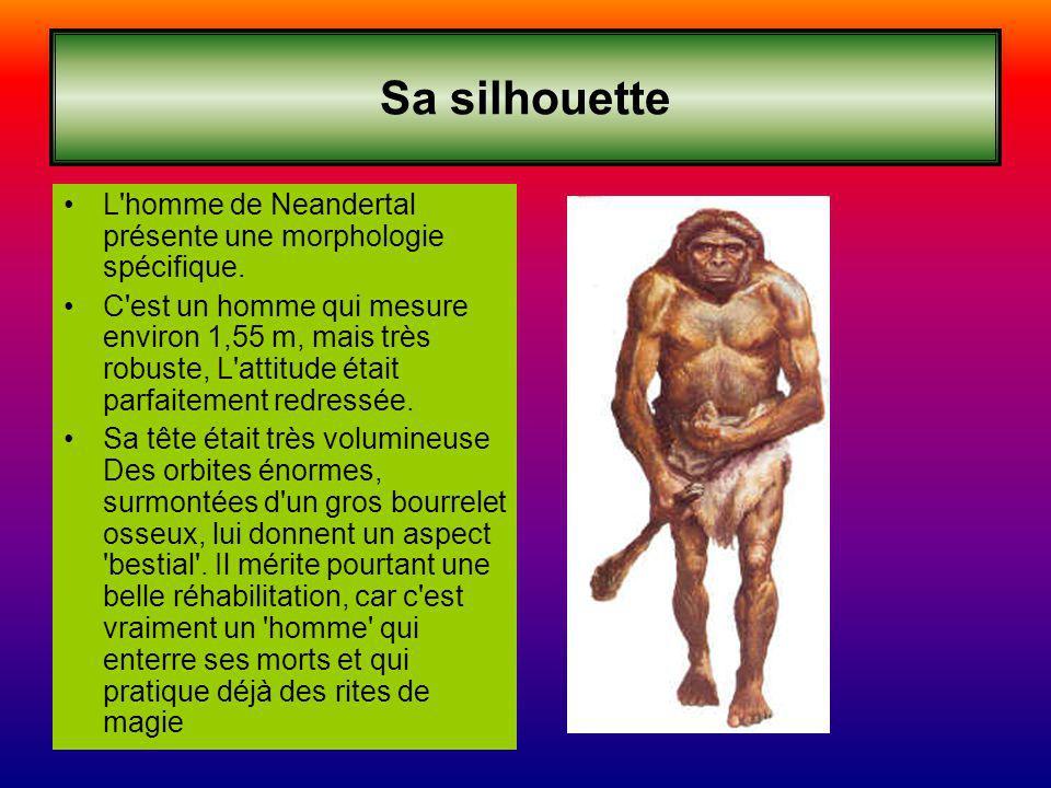 Sa silhouette L homme de Neandertal présente une morphologie spécifique.
