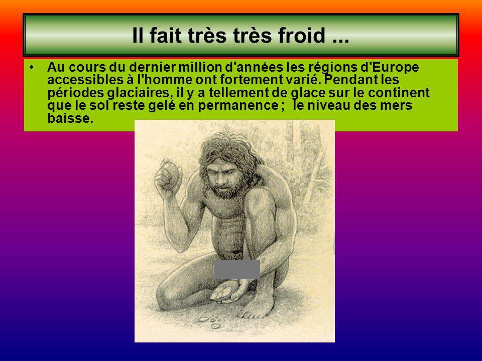 Il fait très très froid... Au cours du dernier million d'années les régions d'Europe accessibles à l'homme ont fortement varié. Pendant les périodes g
