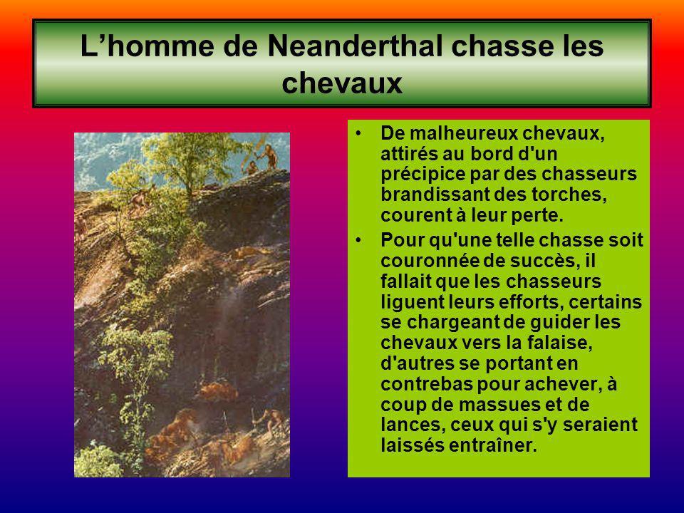 Lhomme de Neanderthal chasse les chevaux De malheureux chevaux, attirés au bord d un précipice par des chasseurs brandissant des torches, courent à leur perte.