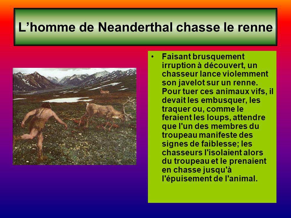 Lhomme de Neanderthal chasse le renne Faisant brusquement irruption à découvert, un chasseur lance violemment son javelot sur un renne. Pour tuer ces
