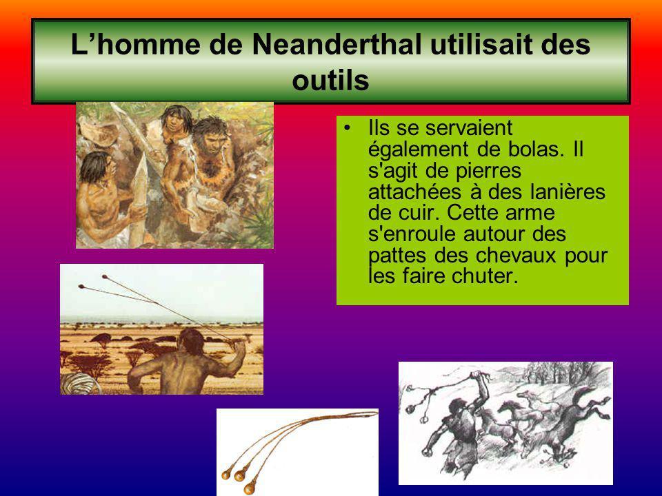 Lhomme de Neanderthal utilisait des outils Ils se servaient également de bolas. Il s'agit de pierres attachées à des lanières de cuir. Cette arme s'en