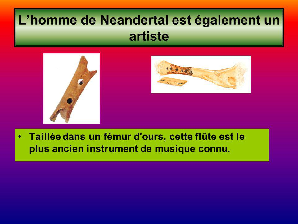 Lhomme de Neandertal est également un artiste Taillée dans un fémur d ours, cette flûte est le plus ancien instrument de musique connu.