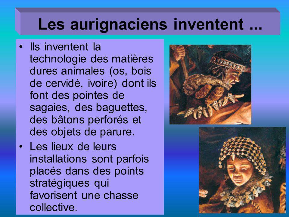 Les aurignaciens inventent... Ils inventent la technologie des matières dures animales (os, bois de cervidé, ivoire) dont ils font des pointes de saga