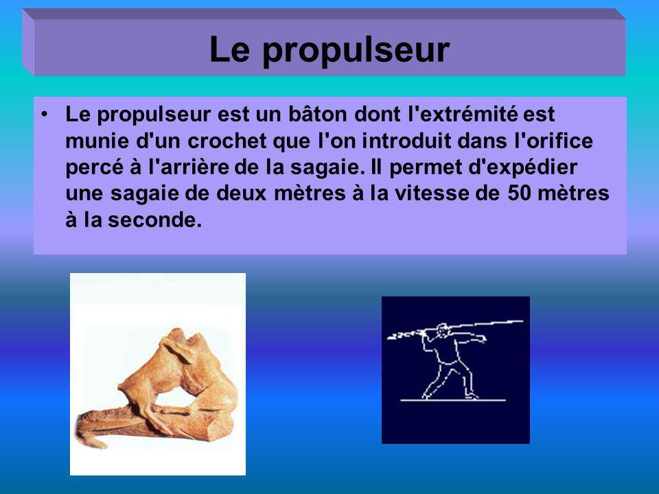 Le propulseur Le propulseur est un bâton dont l'extrémité est munie d'un crochet que l'on introduit dans l'orifice percé à l'arrière de la sagaie. Il
