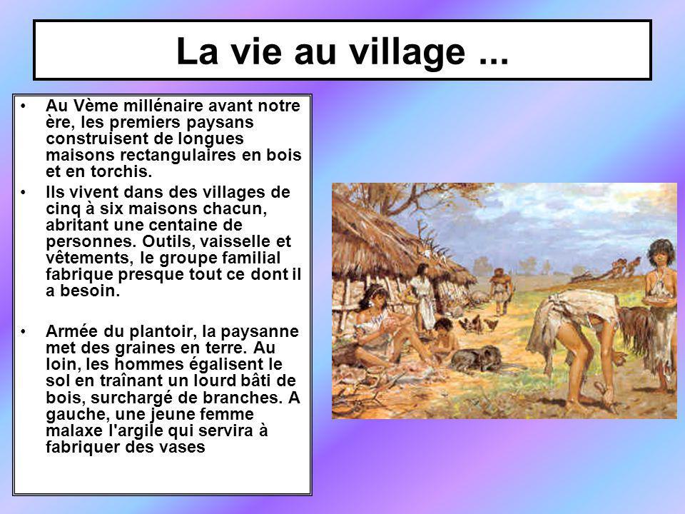 La vie au village... Au Vème millénaire avant notre ère, les premiers paysans construisent de longues maisons rectangulaires en bois et en torchis. Il