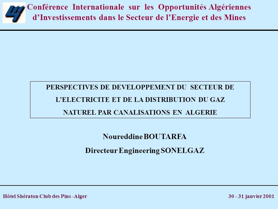 Hôtel Shératon Club des Pins -Alger 30 - 31 janvier 2001 1.Introduction 2.Electricité 3.Gaz 4.Investissements 1999_2010 5.Domaines de partenariat 6.Le projet 2000 MW PLAN DE LEXPOSE