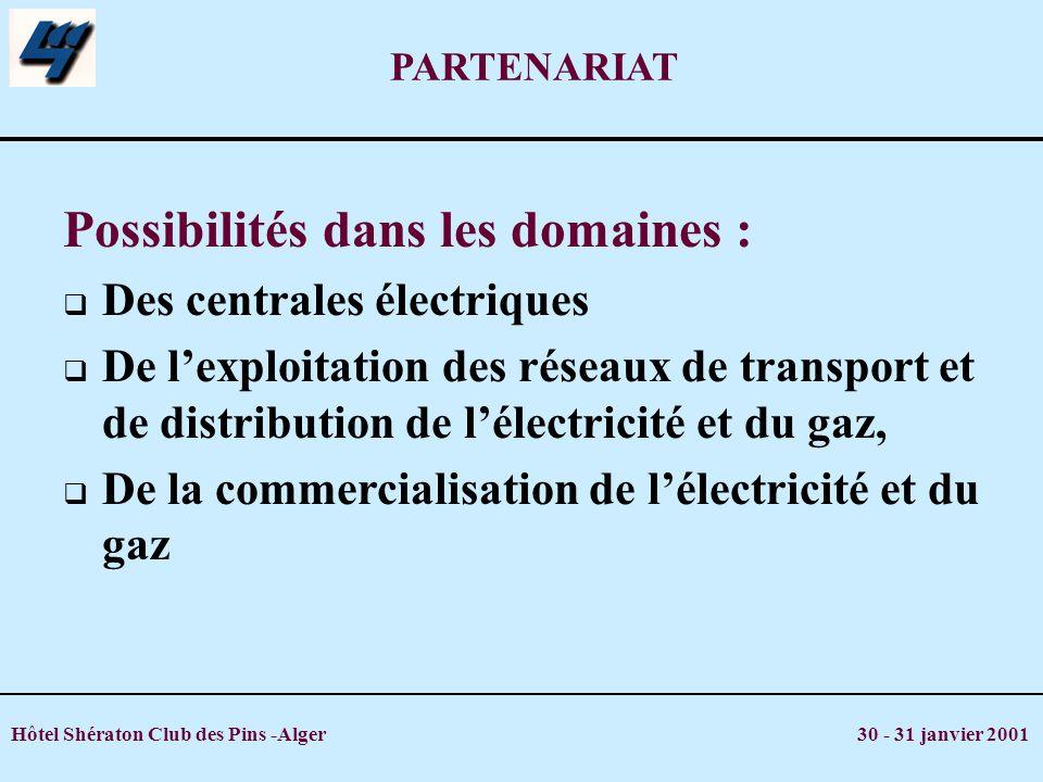 Hôtel Shératon Club des Pins -Alger 30 - 31 janvier 2001 PARTENARIAT Possibilités dans les domaines : Des centrales électriques De lexploitation des r
