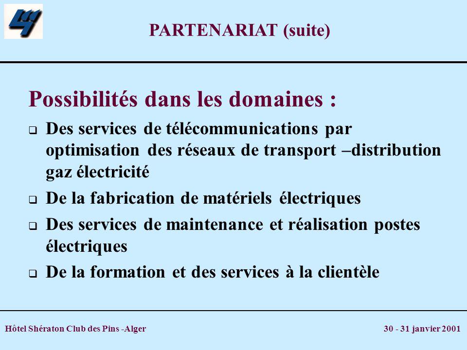 Hôtel Shératon Club des Pins -Alger 30 - 31 janvier 2001 PARTENARIAT (suite) Possibilités dans les domaines : Des services de télécommunications par o