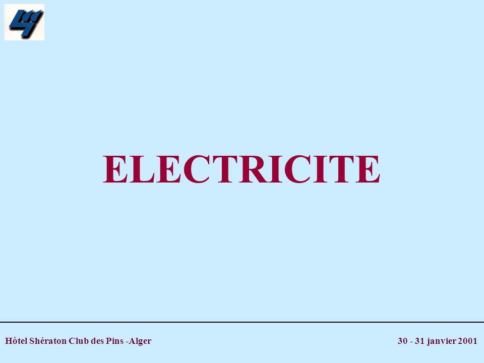 Hôtel Shératon Club des Pins -Alger 30 - 31 janvier 2001 19,6 tWh 4,4 millions de clients 1999 5800 MW