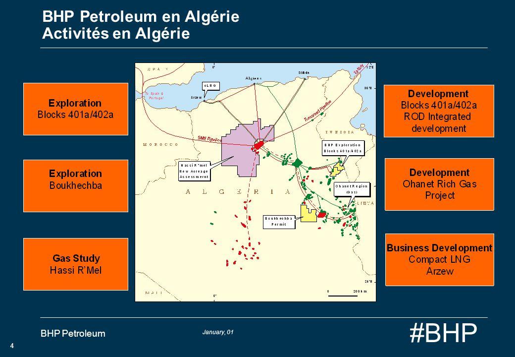 January, 01 BHP Petroleum 5 #BHP BHP Petroleum en Algérie Développement Intégré ROD BRN Facilities Dév.