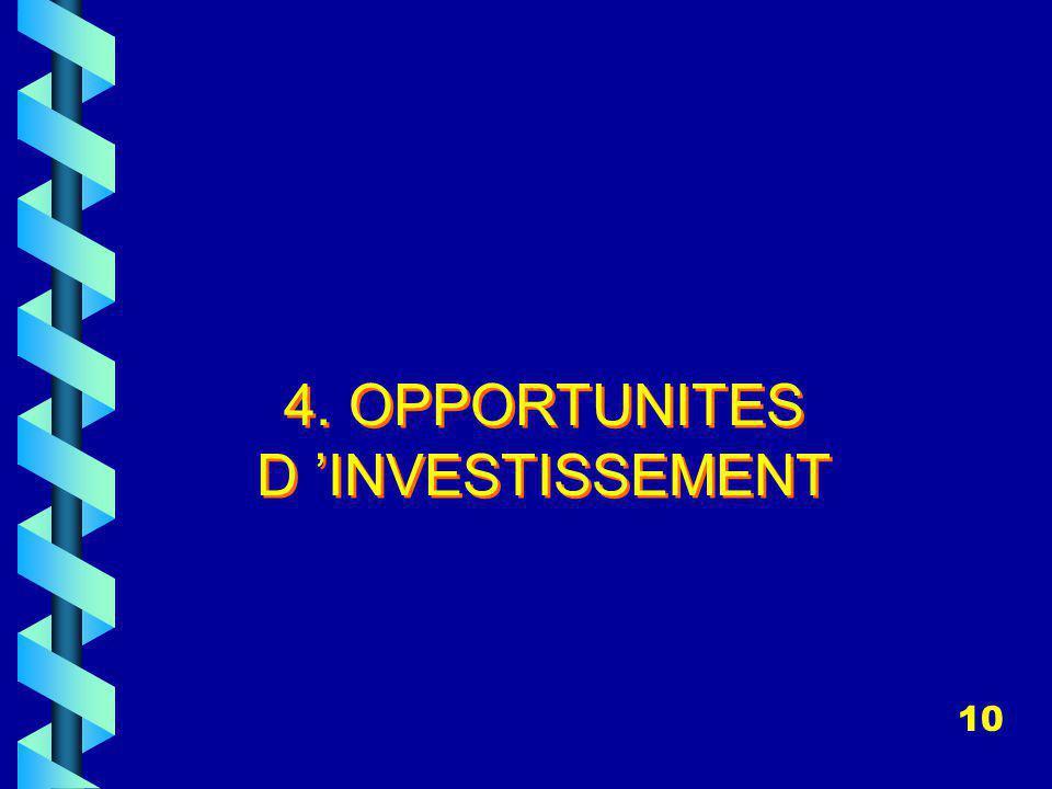 4. OPPORTUNITES D INVESTISSEMENT 10