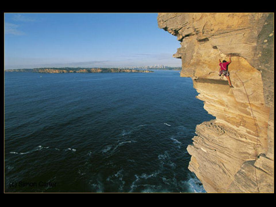 Charles Marshall Pratt, dit Chuck Pratt (1939-2000), est un grimpeur américain. C'est l'un des pionniers des Big wall dans les années 1960.