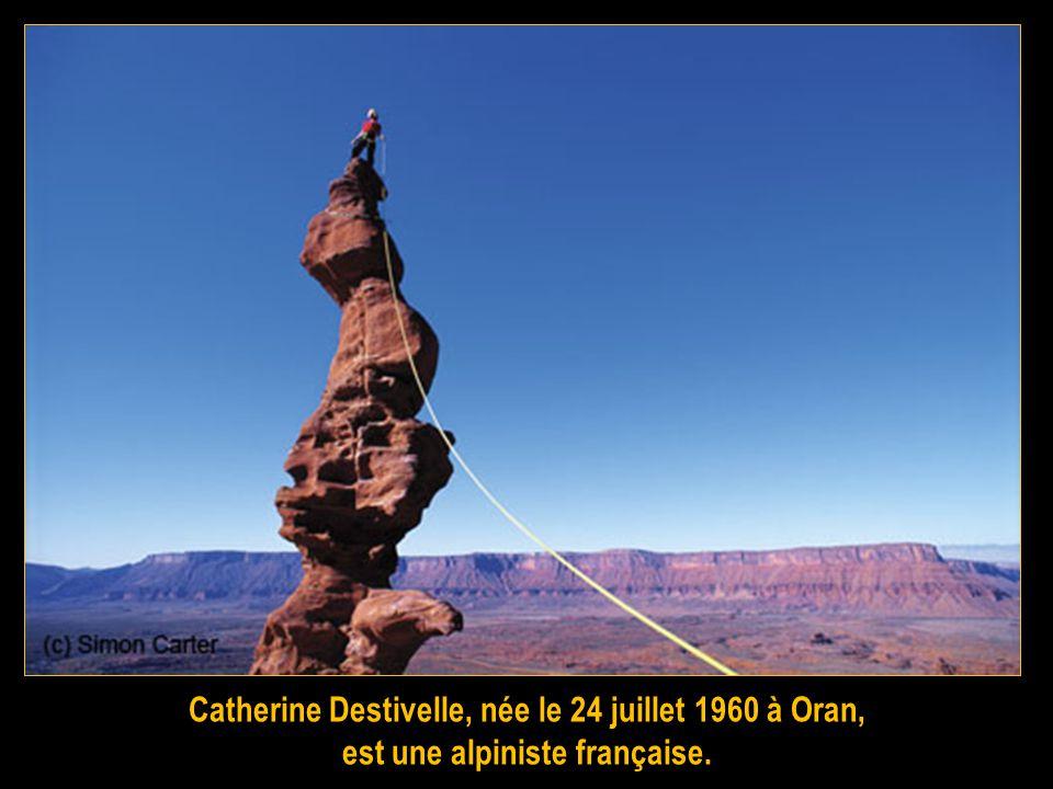 Henri Emmanuel Boileau, baron de Castelnau, né à Nîmes en 1857 et mort en 1923 est un alpiniste français vainqueur de la Meije. Il découvre la montagn