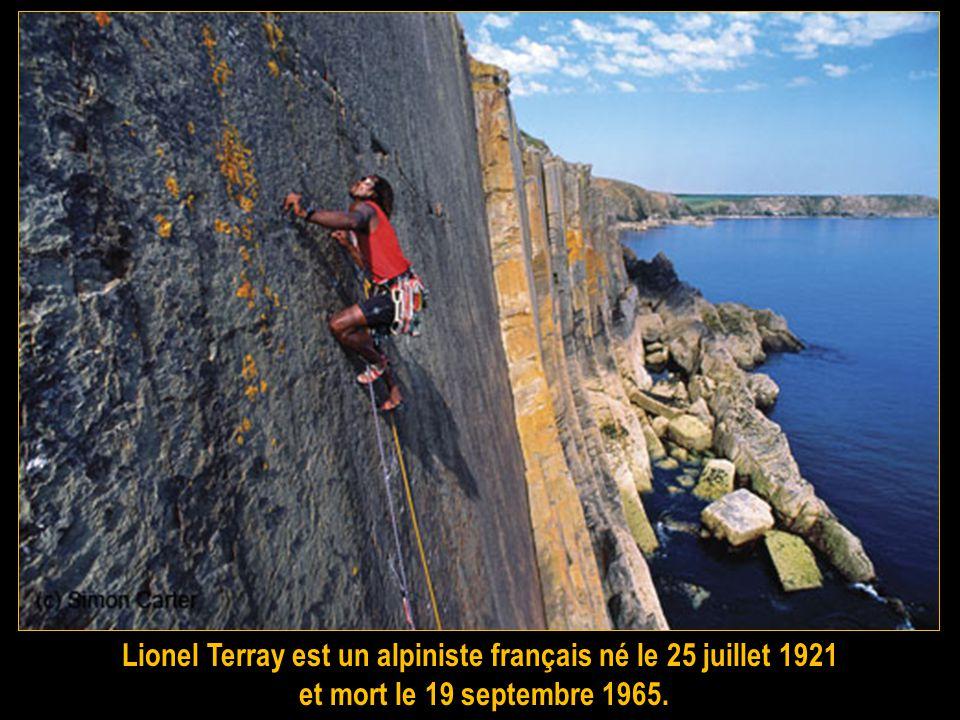 Jean-Christophe Lafaille (né le 31 mars 1965 à Gap et disparu le 26 janvier 2006 sur les pentes du Makalu, au Népal), est un alpiniste français. Il a