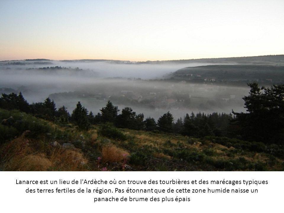 Le brouillard qui surplombe cette étendue d'eau, en Normandie, efface totalement la limite entre le ciel et l'eau. Il fait se confondre les arbres et