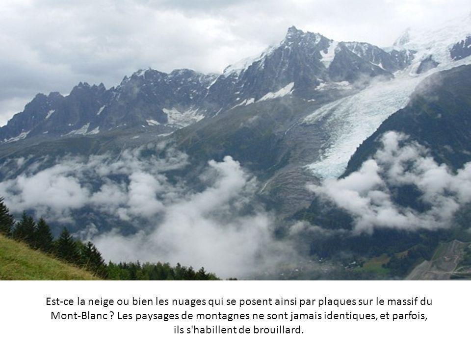 Lanarce est un lieu de l'Ardèche où on trouve des tourbières et des marécages typiques des terres fertiles de la région. Pas étonnant que de cette zon