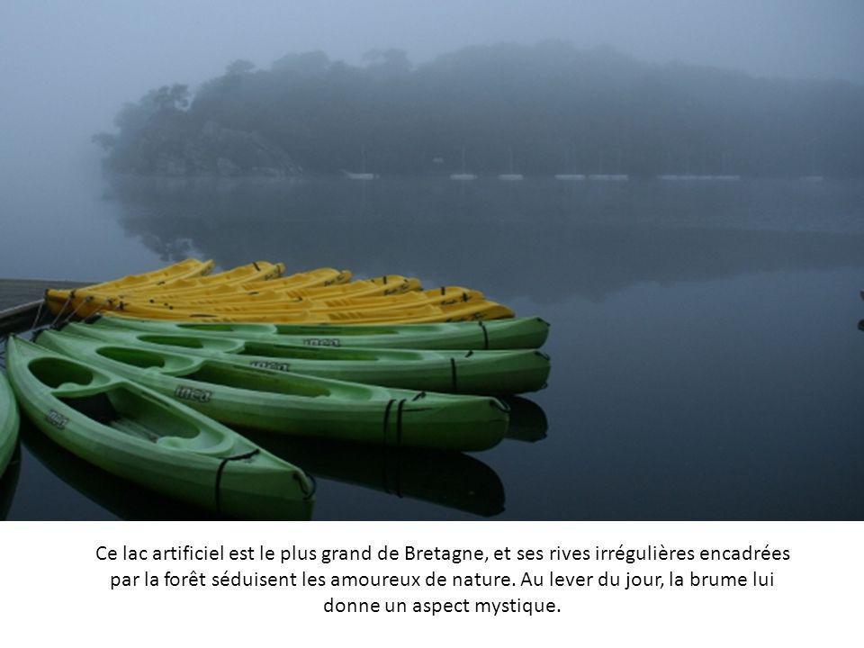 Le village de Saint-Pierre-Baptiste se situe au Québec, au sud du fleuve Saint-Laurent. La brume se lève au-dessus des toits, et efface les traces des