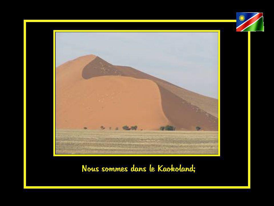 Nous sommes dans le Kaokoland;