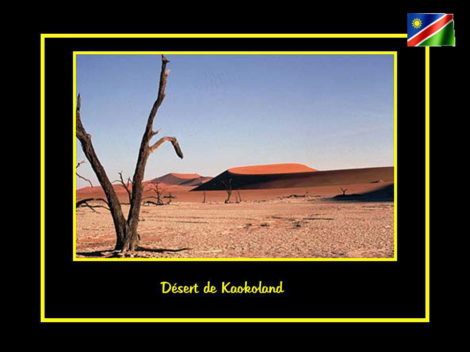 Désert de Kaokoland