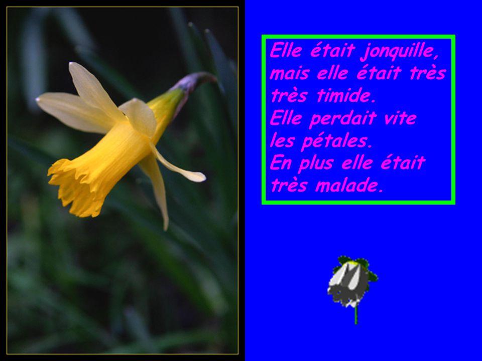 Voici l'histoire de Marguerite, la petite Fleur, Marguerite était très timide.