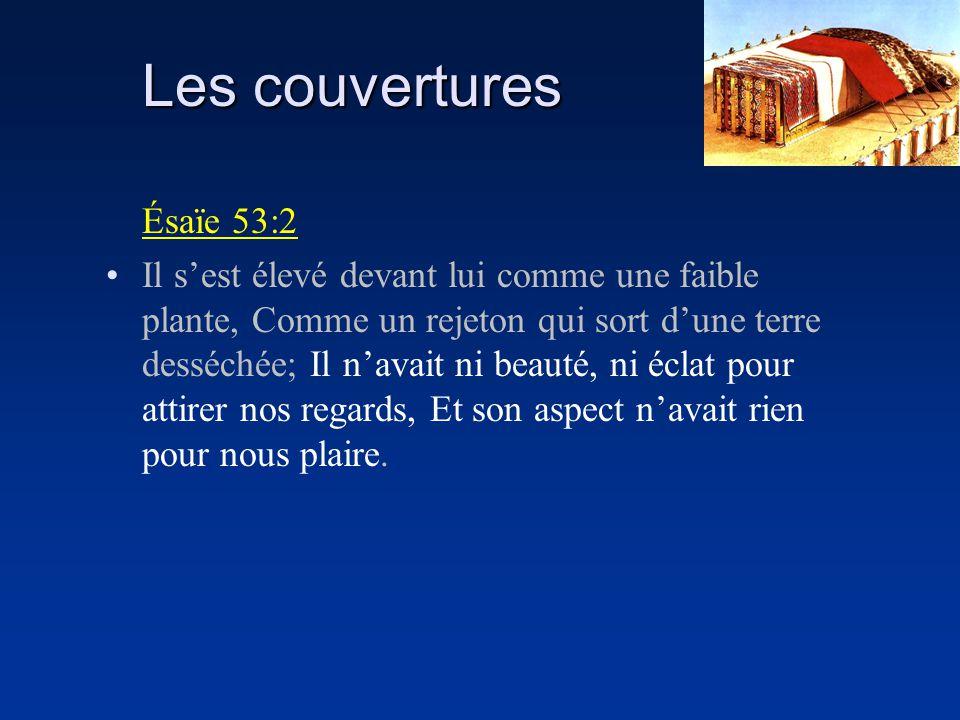 Les couvertures Ésaïe 53:2 Il sest élevé devant lui comme une faible plante, Comme un rejeton qui sort dune terre desséchée; Il navait ni beauté, ni é