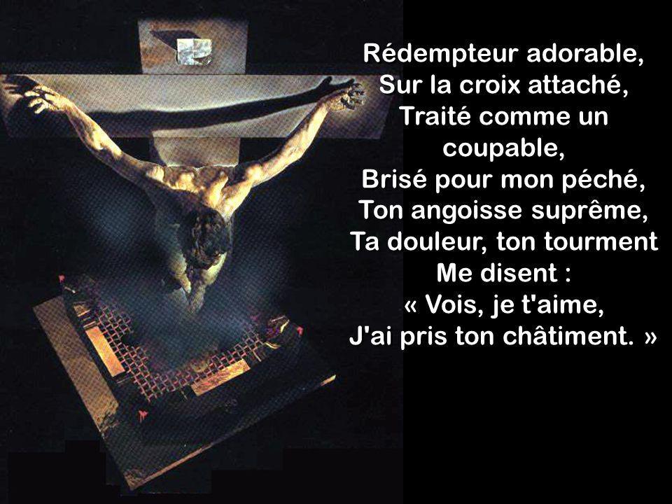 Rédempteur adorable, Sur la croix attaché, Traité comme un coupable, Brisé pour mon péché, Ton angoisse suprême, Ta douleur, ton tourment Me disent :