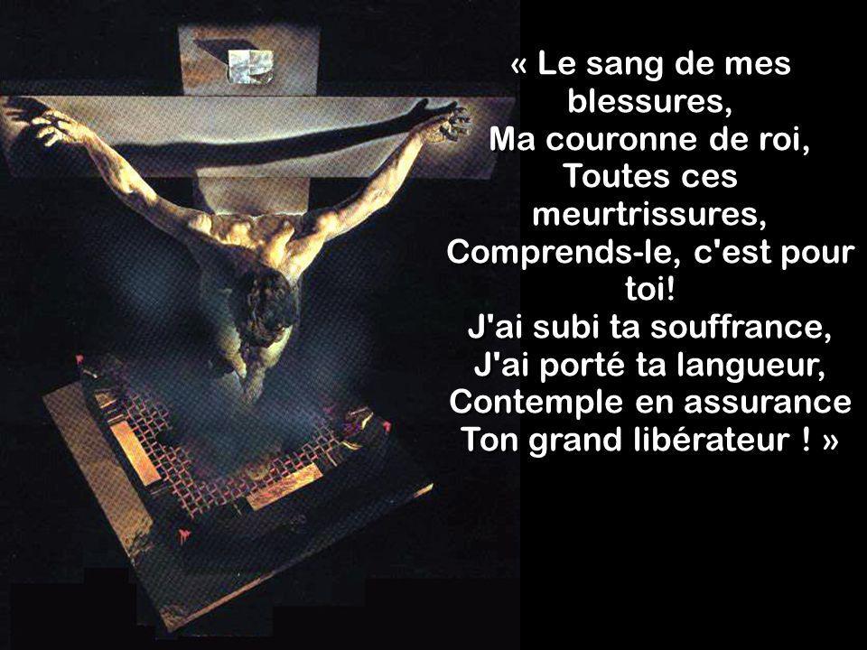 « Le sang de mes blessures, Ma couronne de roi, Toutes ces meurtrissures, Comprends-le, c'est pour toi! J'ai subi ta souffrance, J'ai porté ta langueu