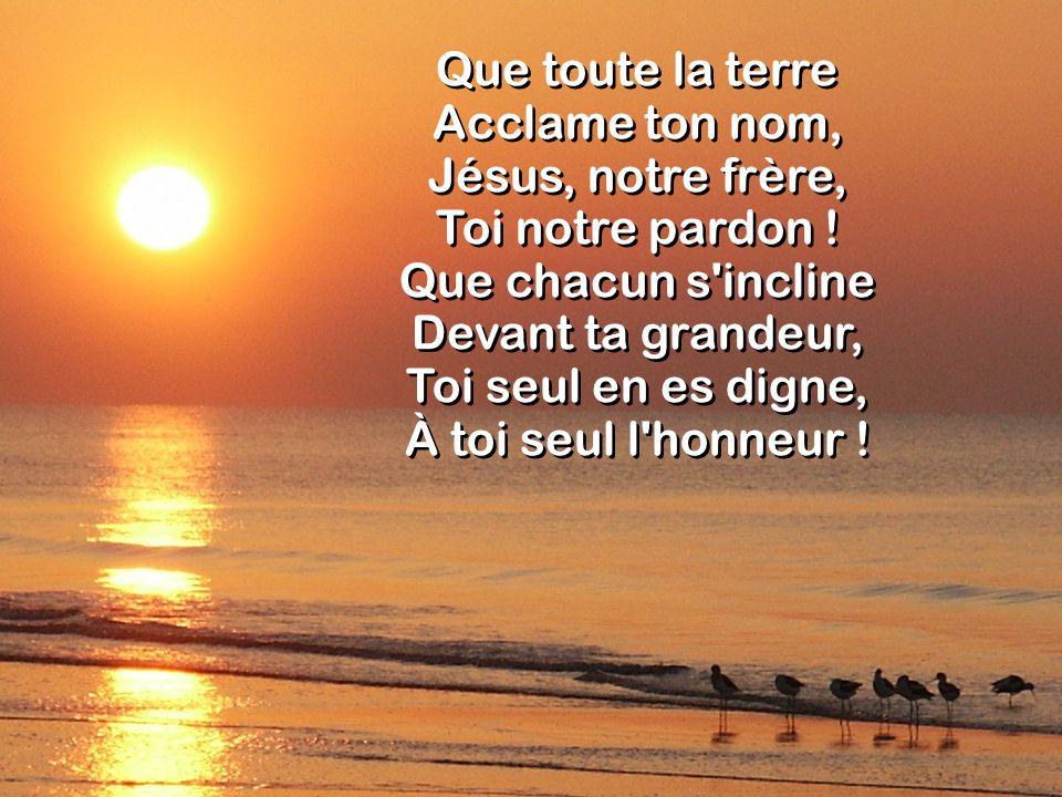 Que toute la terre Acclame ton nom, Jésus, notre frère, Toi notre pardon ! Que chacun s'incline Devant ta grandeur, Toi seul en es digne, À toi seul l