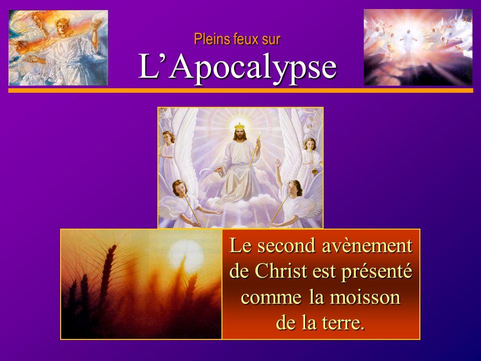 D anie l Pleins feux sur 3 LApocalypse Le second avènement de Christ est présenté comme la moisson de la terre.
