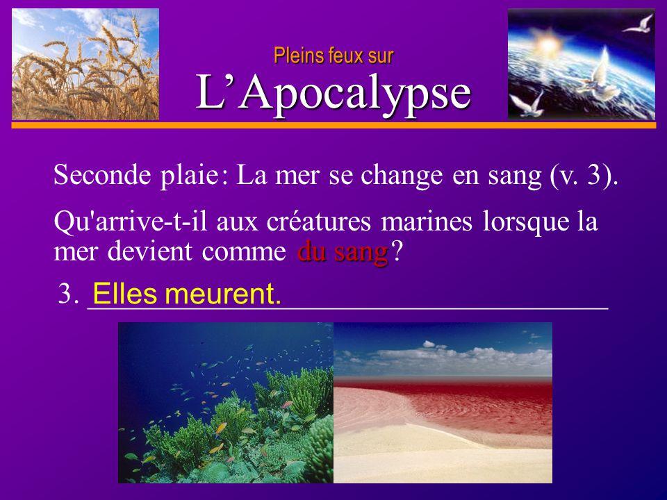 D anie l Pleins feux sur 8 LApocalypse 3. ___________________________________ du sang Qu'arrive-t-il aux créatures marines lorsque la mer devient comm