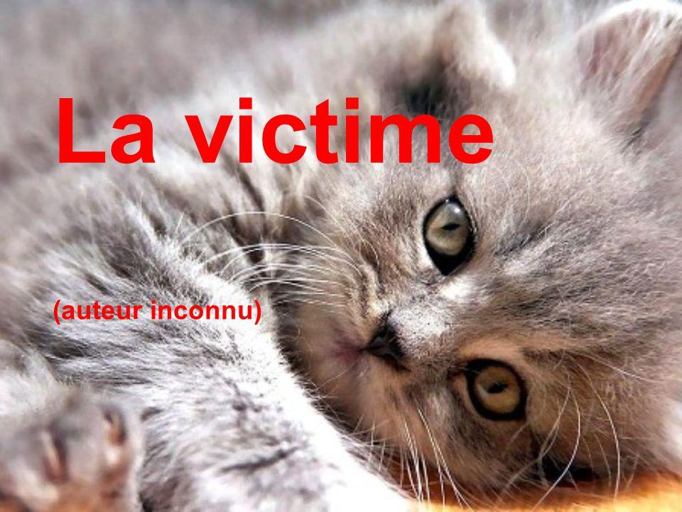La victime veut souvent sauver son persécuteur, et c est ainsi que le persécuteur devient victime de son sauveteur.