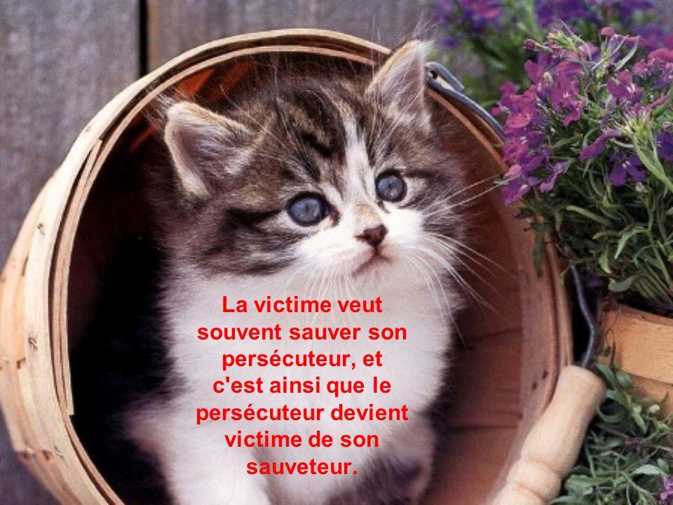 A persécuter une victime, on risque de devenir victime de celui que l'on persécute.