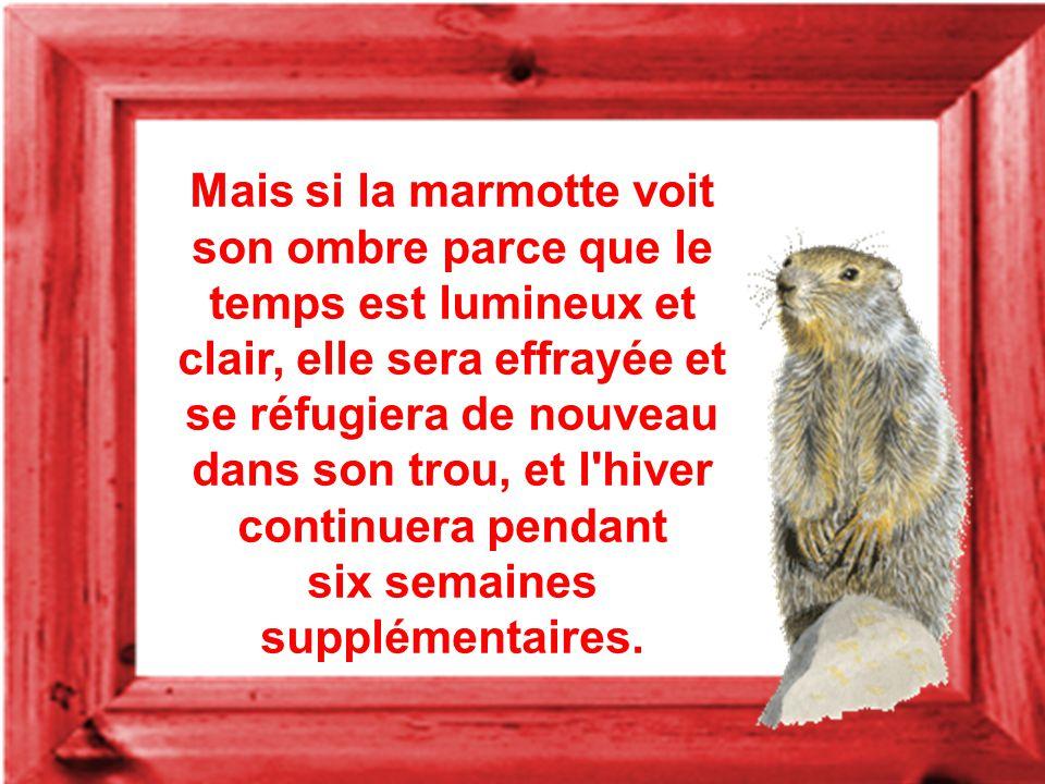 Si la marmotte émerge et ne voit pas son ombre parce que le temps est nuageux, l'hiver finira bientôt.