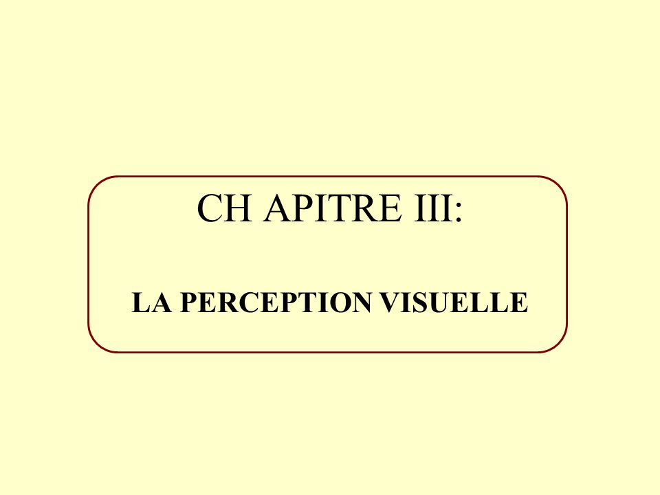 CHAPITRE III: LA PERCEPTION VISUELLE