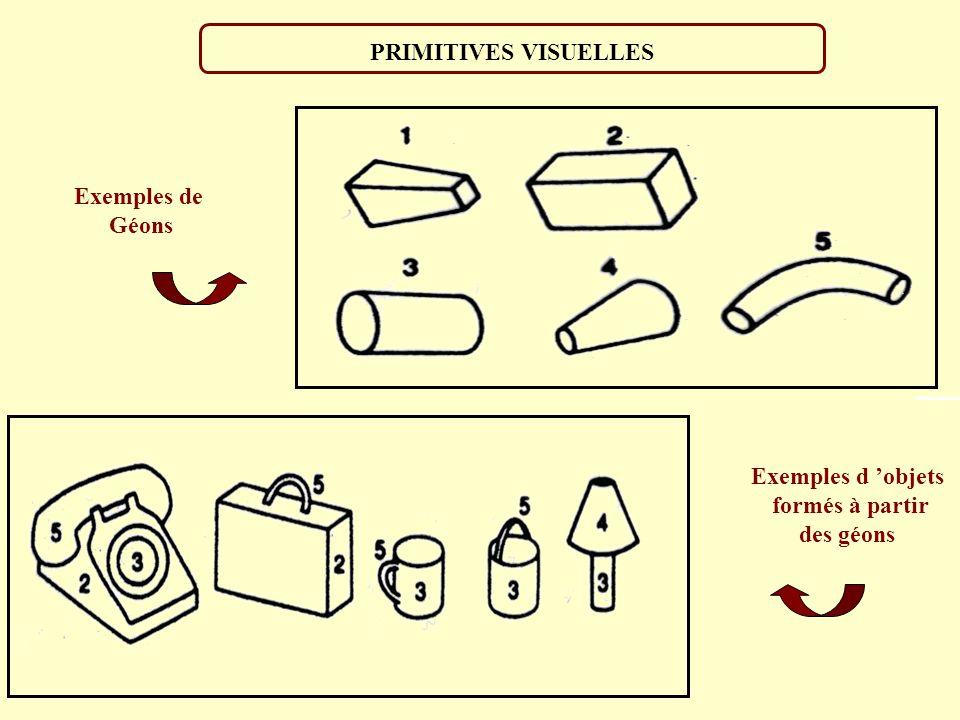 NIVEAUX DE REPRESENTATIONS Catégorisation perceptive: Animaux/Mammifère/Degré de typicalité Accès au lexique de nom: Elephant Géons: