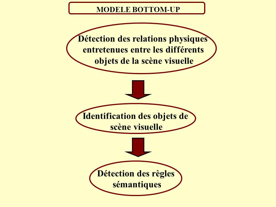 LES REGLES A RESPECTER (Biederman et al. ; 1982) 1. Règle de support: Un objet repose sur une surface 2. Règle d interposition: Un objet opaque cacher