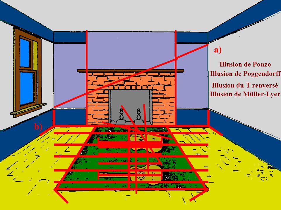 EXPLICATION DE L ILLUSION DE ZOLLNER Distance angulaire (en degrés) 30 20 10 0 10 20 30 16° 12° Barres dont la distance angulaire est égale à 12° Dist
