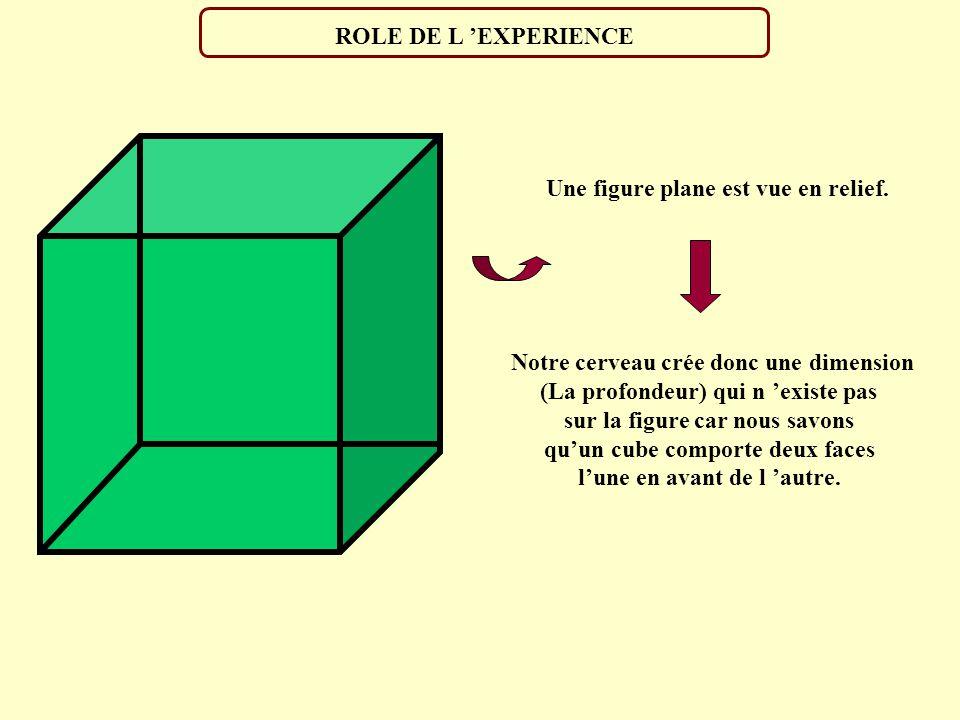 a) b) Illusion de Ponzo Illusion du T renversé Illusion de Poggendorff Illusion de Müller-Lyer