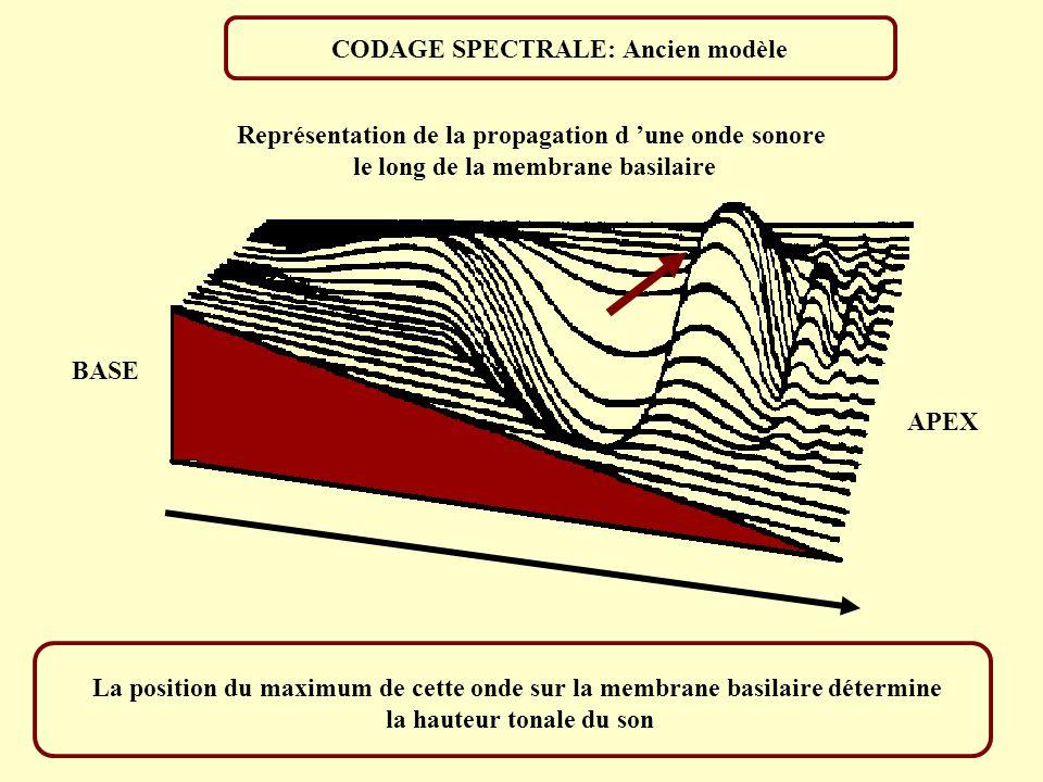 HAUTEUR FONDAMENTALE 200Hz SON COMPLEXE SON PUR 200Hz Tâche: Ajuster le son pur à une hauteur égale à celle du son complexe A F A F