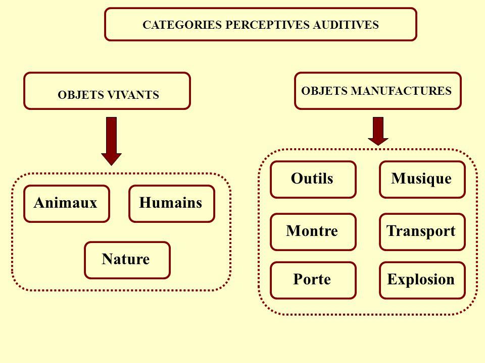 PERCEPTION CATEGORIELLE DES SONS NON-VERBAUX: CUTTING (1982) Temps de montée de l enveloppe temporelle Pourcentage d identification Stimuli 100 80 60